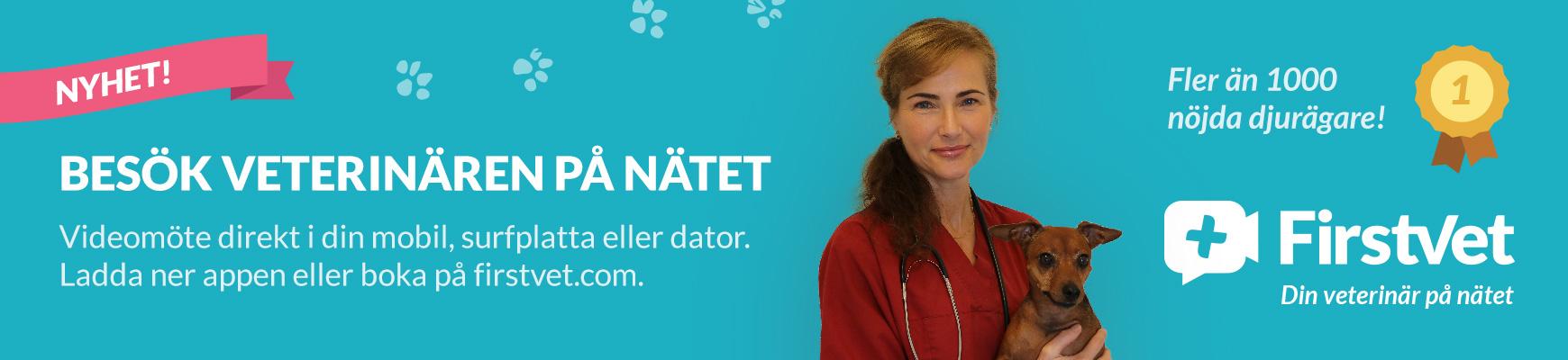 FirstVet - Din veterinär på nätet
