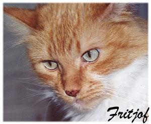 fritjof_usa